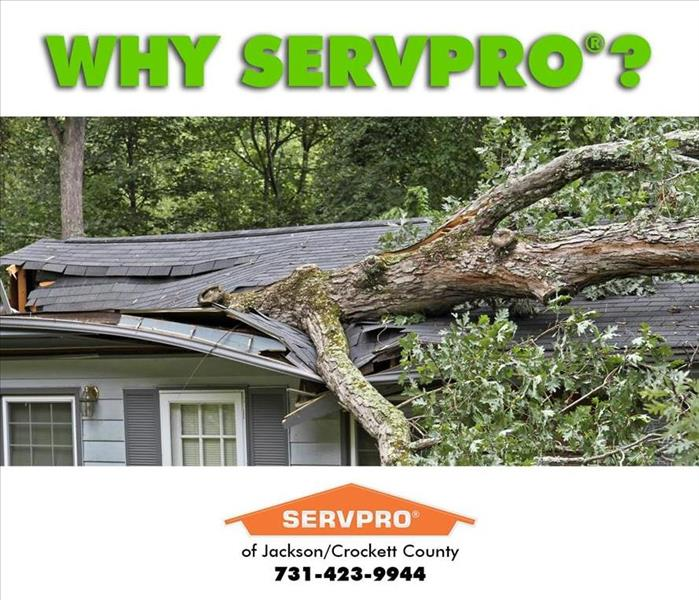 Why SERVPRO Together, We Restore you Home in Alamo, Tennessee