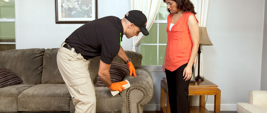 Jackson, TN carpet upholstery cleaning